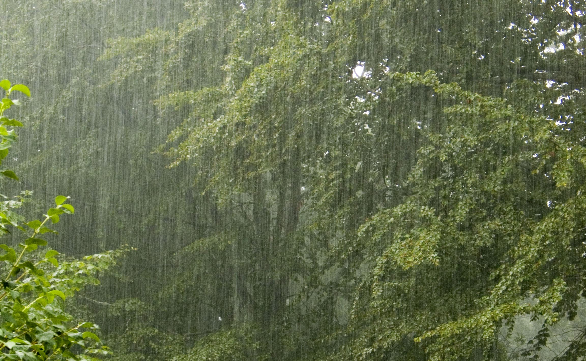 http://babajidesalu.files.wordpress.com/2009/07/rain24-hours.jpg