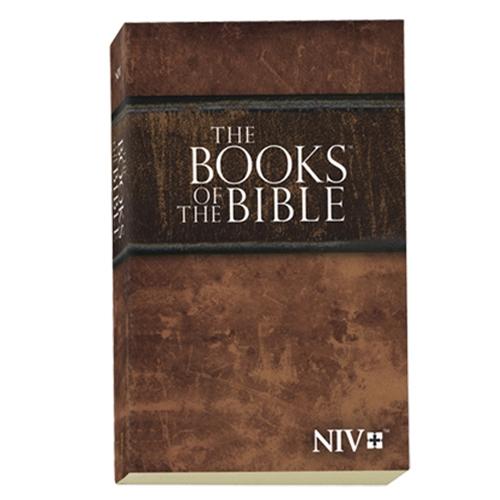NIV-bible-jide-salu