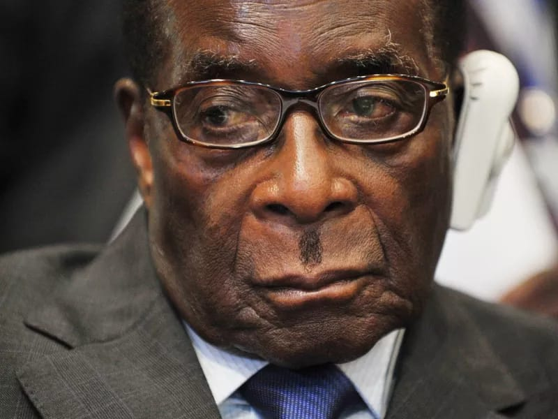 President Robert Mugabe of Zimbabwe has been in power for 29 years
