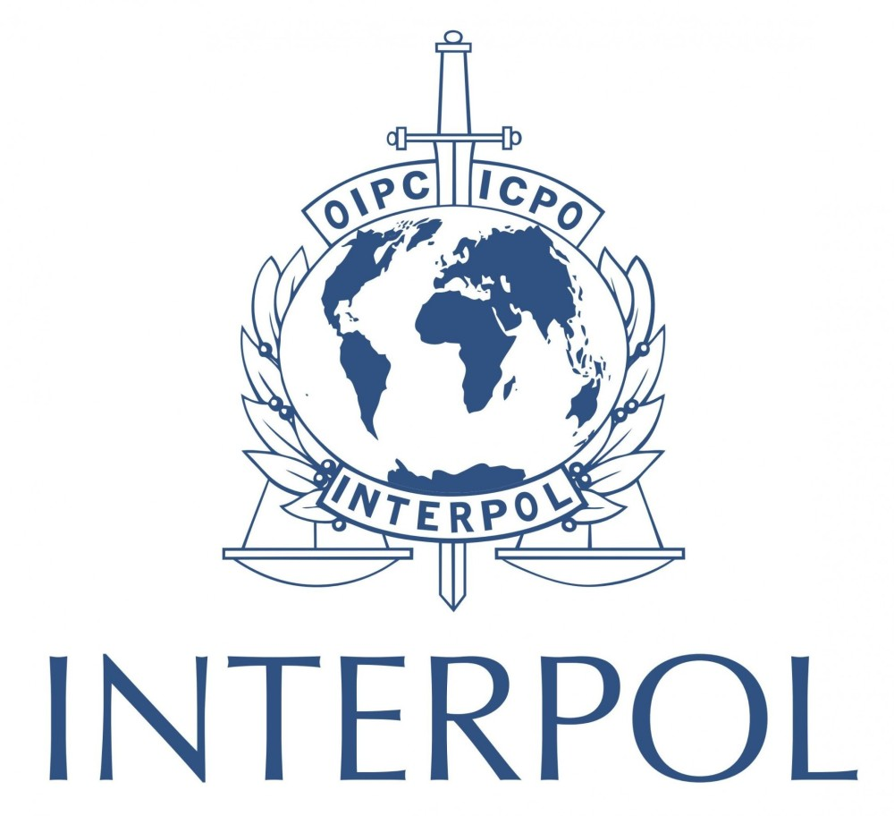 interpol-jide-salu