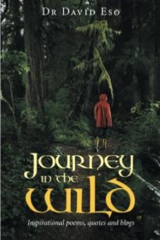Journey in the Wild-david-eso-jide-salu