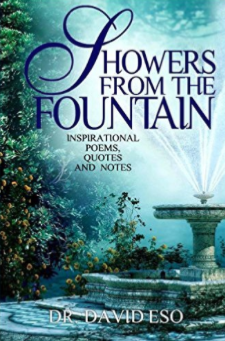 Showers From The Fountain-david-eso-jide-salu