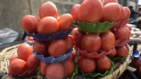 Tomatoes are big business in Nigeria, but the industry has struggled to compete with imports